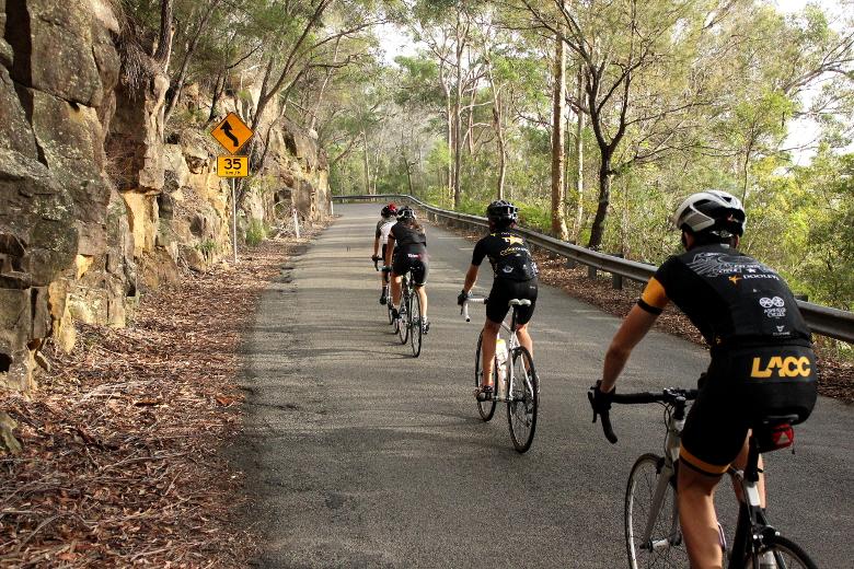 Lidcombe Auburn Cycling Club junior cyclists riding uphill on Bobbin Head West.