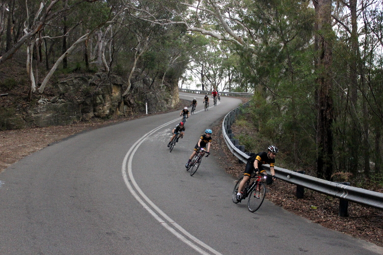 Cyclists from Lidcombe Auburn Cycling Club descending Bobbin Head West in a line.