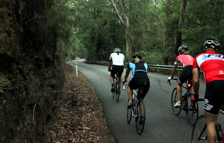 Group of cyclists riding up Bobbin Head East's climb in the early morning.