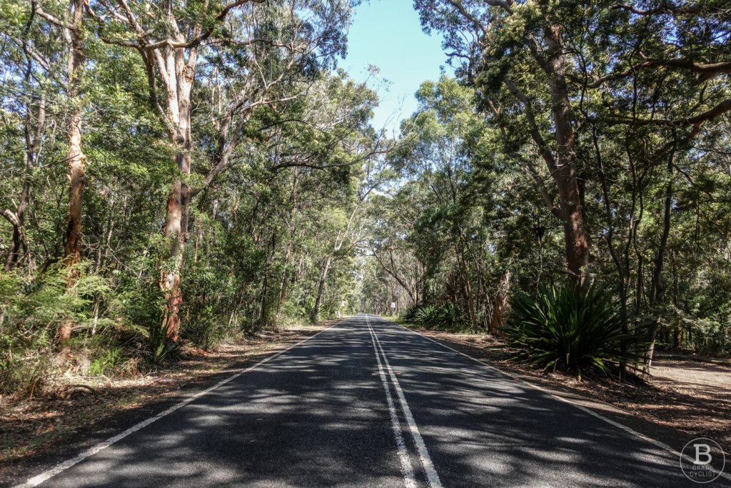 False flat straight on the Waterfall Hill climb in Royal National Park
