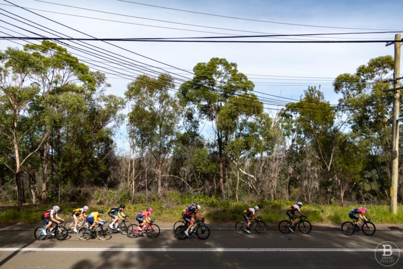Cyclists racing past trees and bush at Beaumont Road, Mount Kuring-gai.